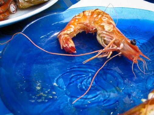 India, Kerala, fish, shrimp, street food, food cart