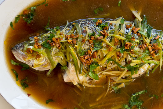 Steamed whole fish for Steamed whole fish
