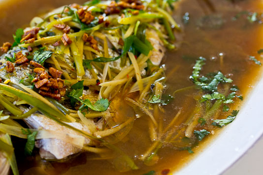 Steamed Fish with Ginger and Scallions Broth