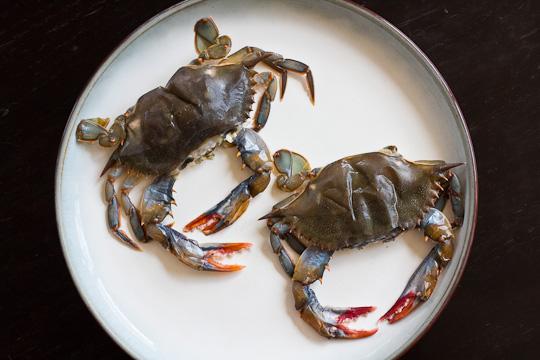 Crab Po Boy-crabs