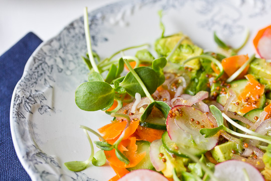 Plate of Sunflower Sprouts Salad