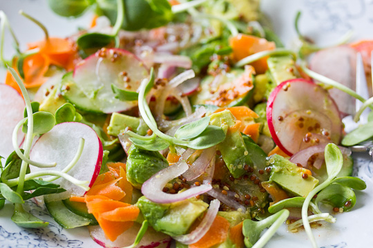 Sunflower Sprouts Salad with Mustard Dressing