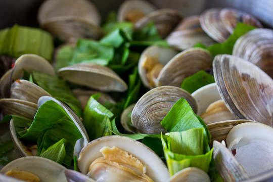 Sauteed Ramps with Clams