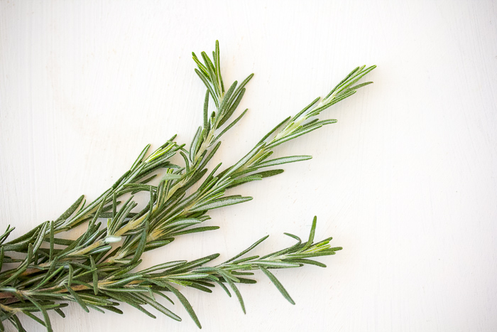 Rosemary Sprigs for Soup